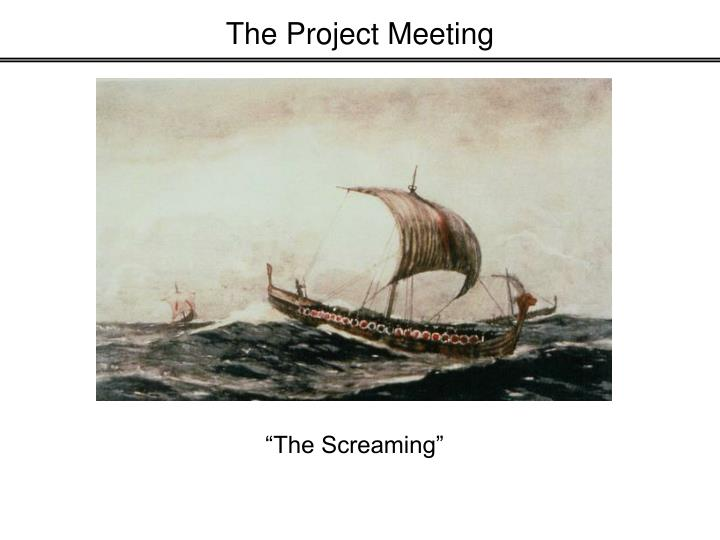The Project Meeting