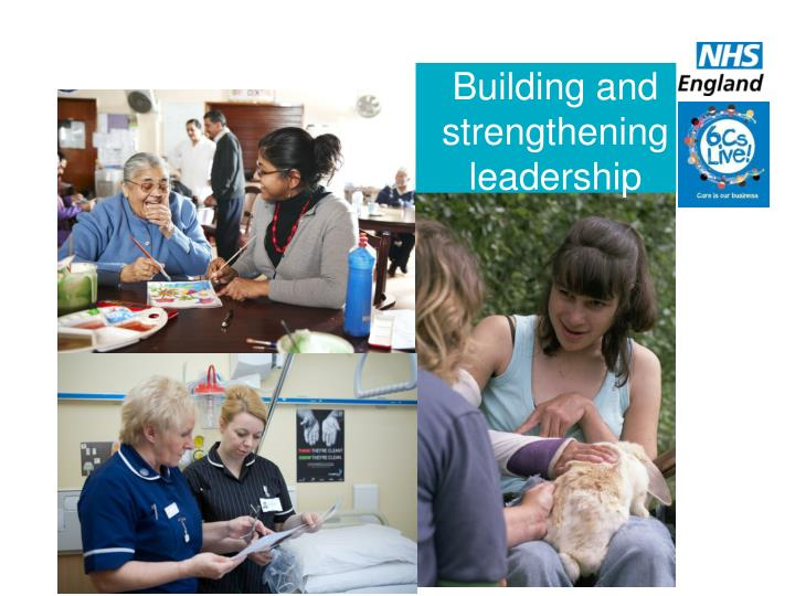 Building and strengthening leadership