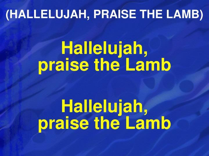 (HALLELUJAH, PRAISE THE LAMB)