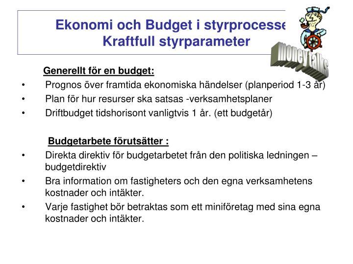 Ekonomi och Budget i styrprocessen