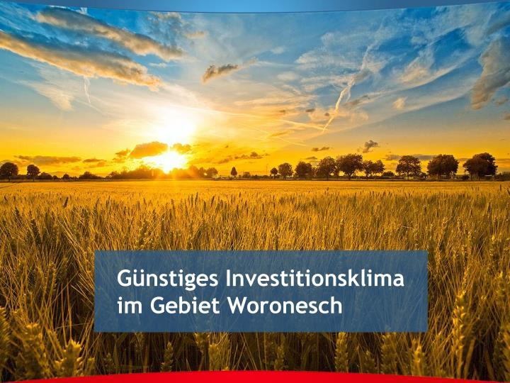 Günstiges Investitionsklima im Gebiet Woronesch