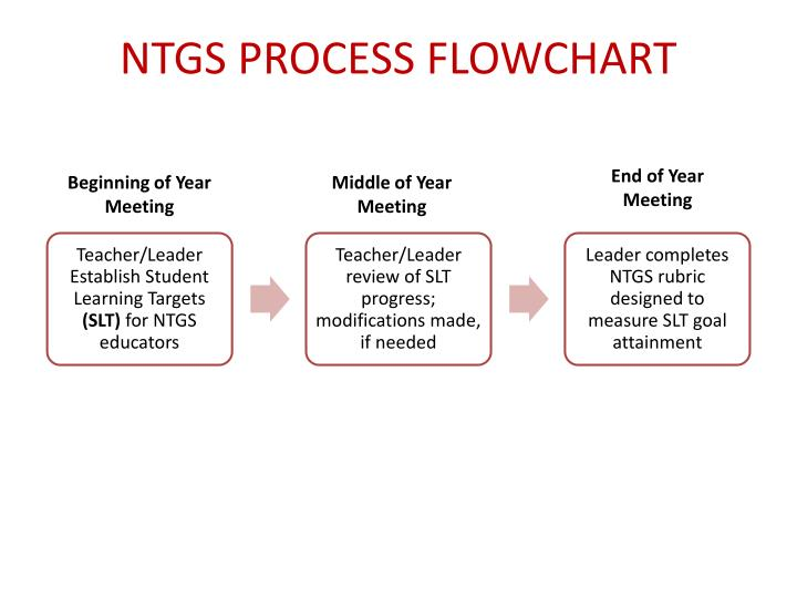 NTGS PROCESS FLOWCHART