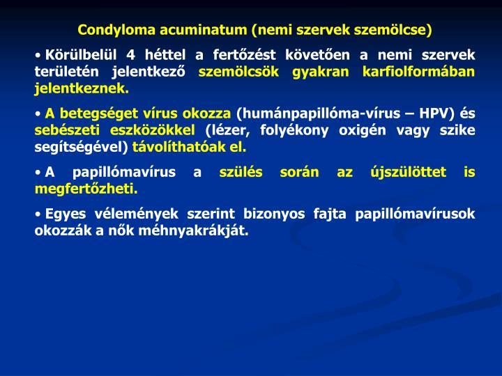 Condyloma acuminatum (nemi szervek szemölcse)