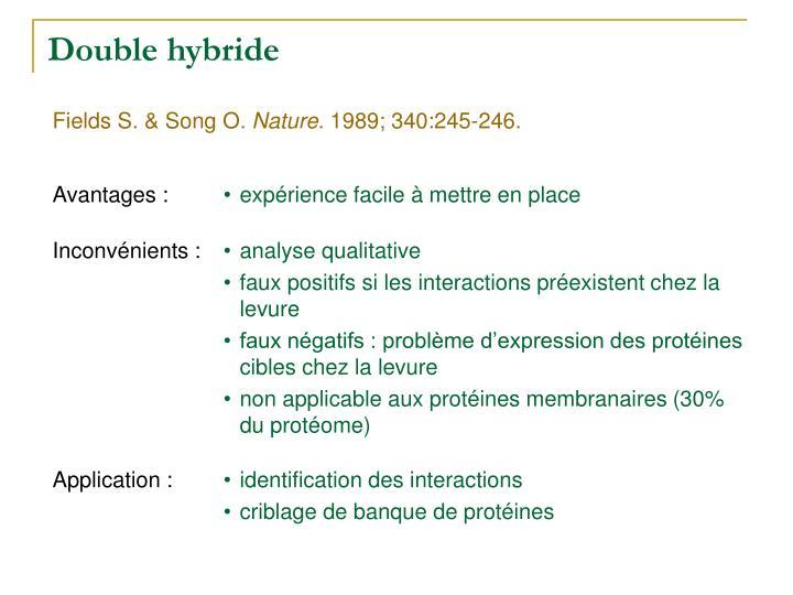 Double hybride
