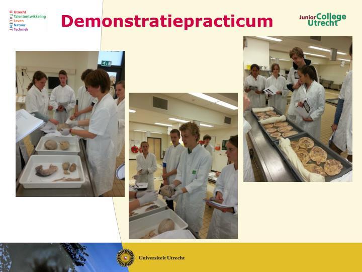 Demonstratiepracticum