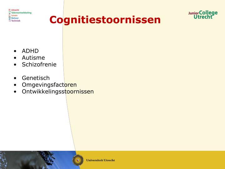 Cognitiestoornissen
