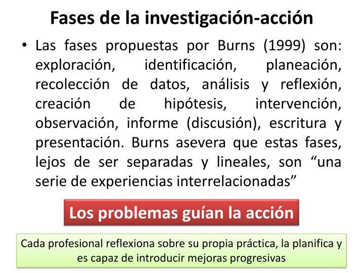 Fases de la investigación-acción