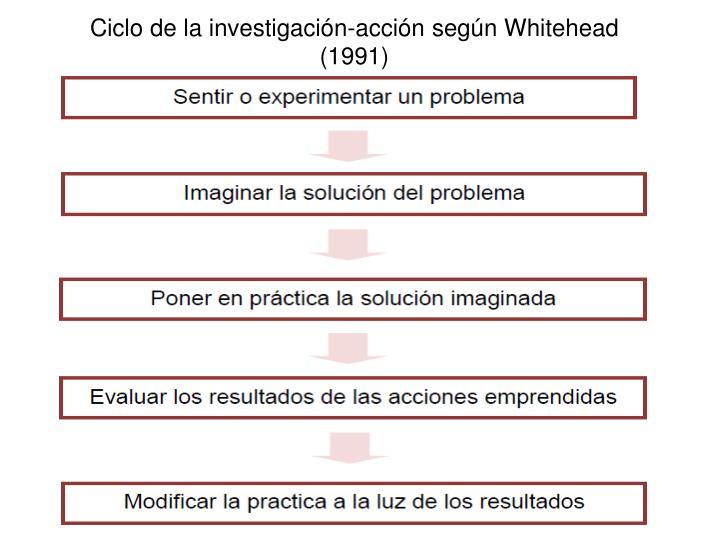 Ciclo de la investigación-acción según