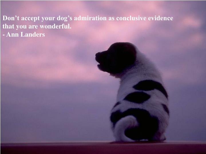 Don't accept your dog's admiration as conclusive evidence