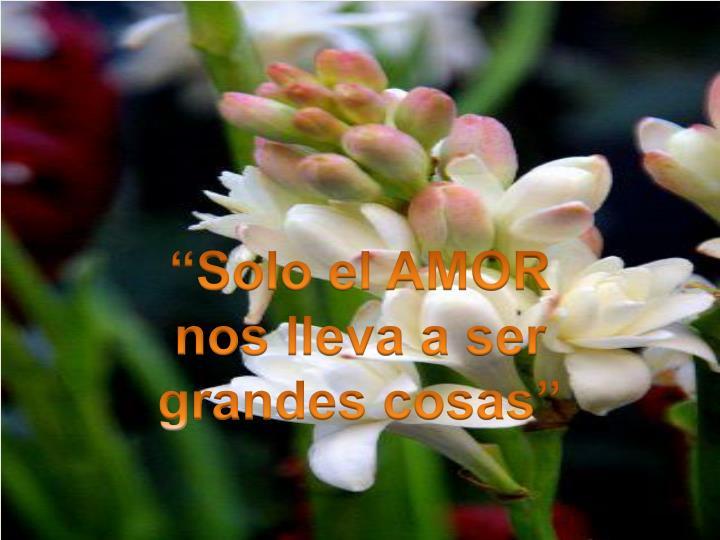 """""""Solo el AMOR"""