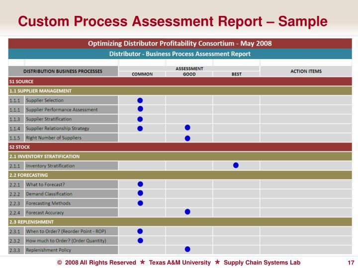 Custom Process Assessment Report – Sample