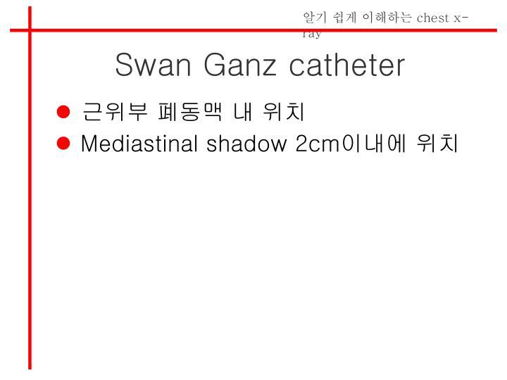 Swan Ganz catheter