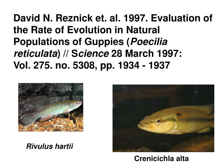 David N. Reznick et. al. 1997. Evaluation of the Rate of Evolution in Natural Populations of Guppies (
