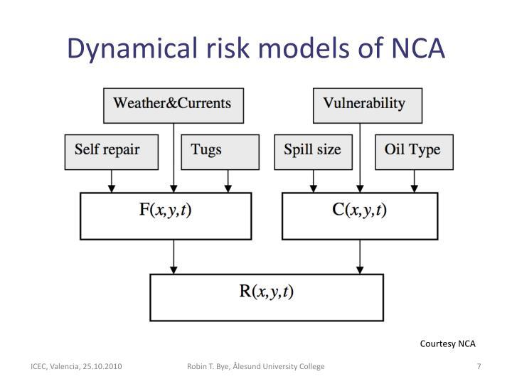 Dynamical risk models of NCA