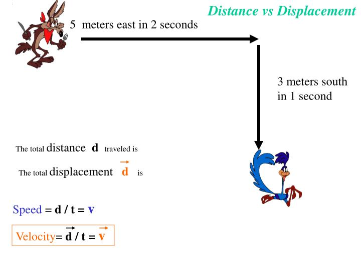 What is the difference between velocity and speed