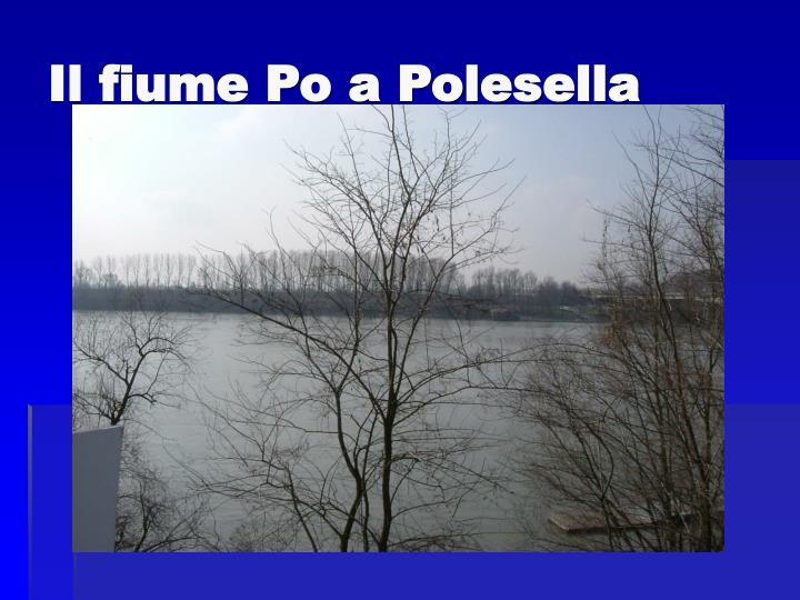 Il fiume Po a Polesella