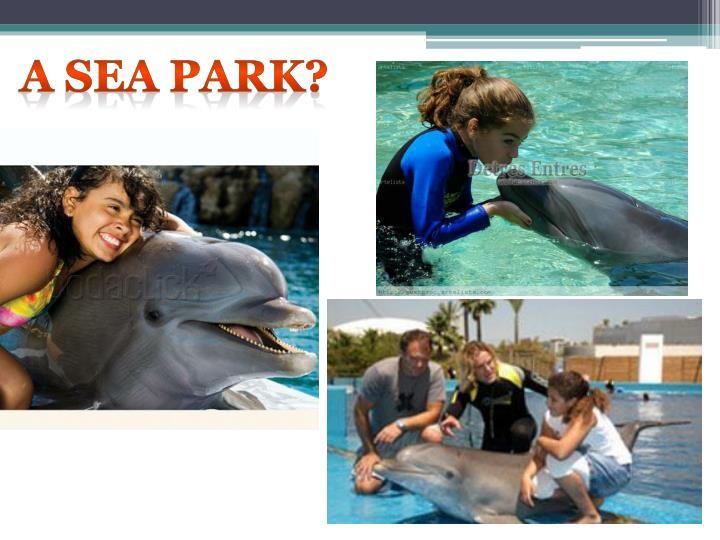 A sea park?