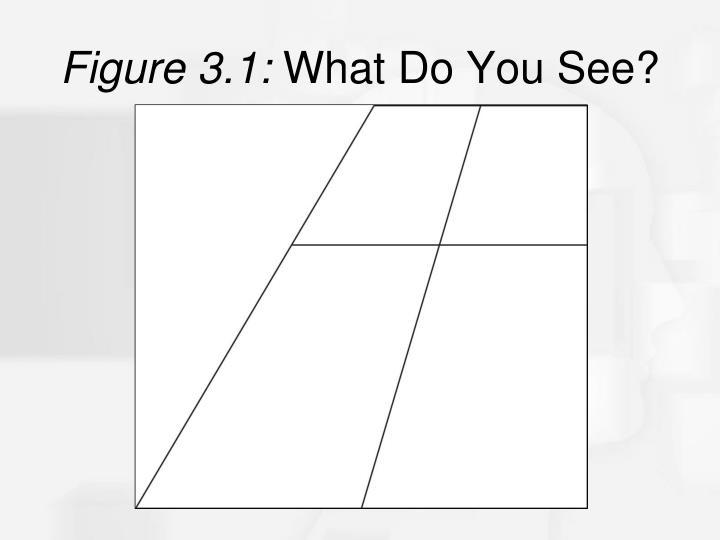 Figure 3.1: