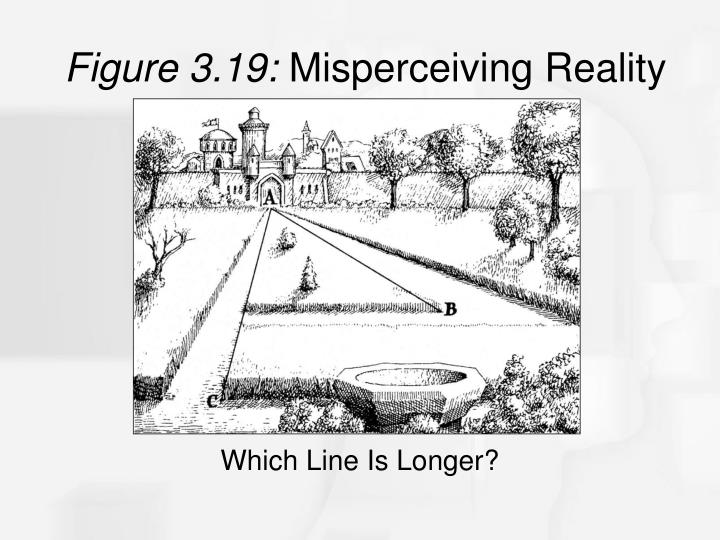 Figure 3.19: