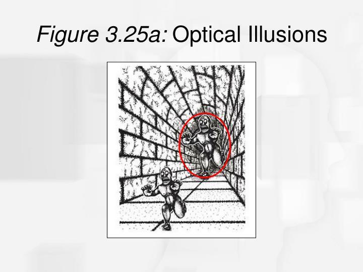Figure 3.25a: