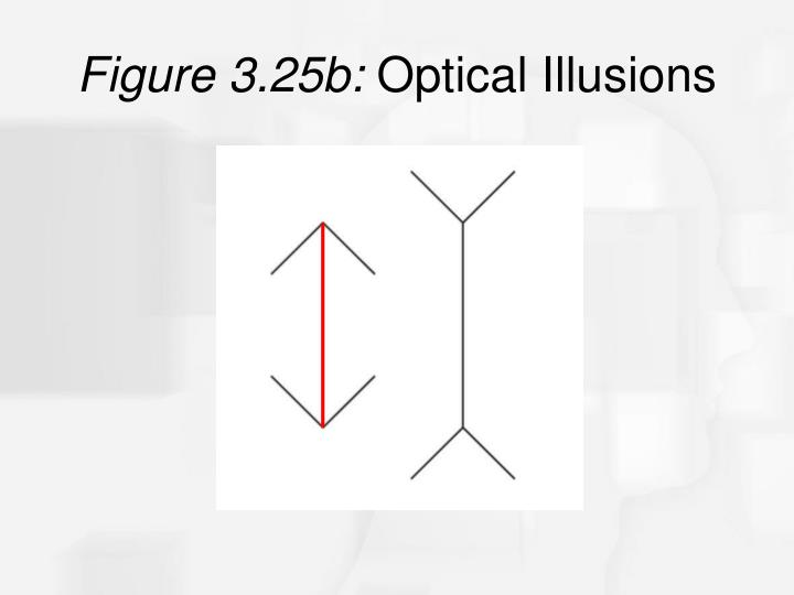Figure 3.25b: