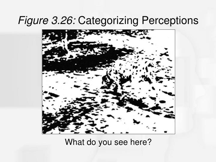 Figure 3.26: