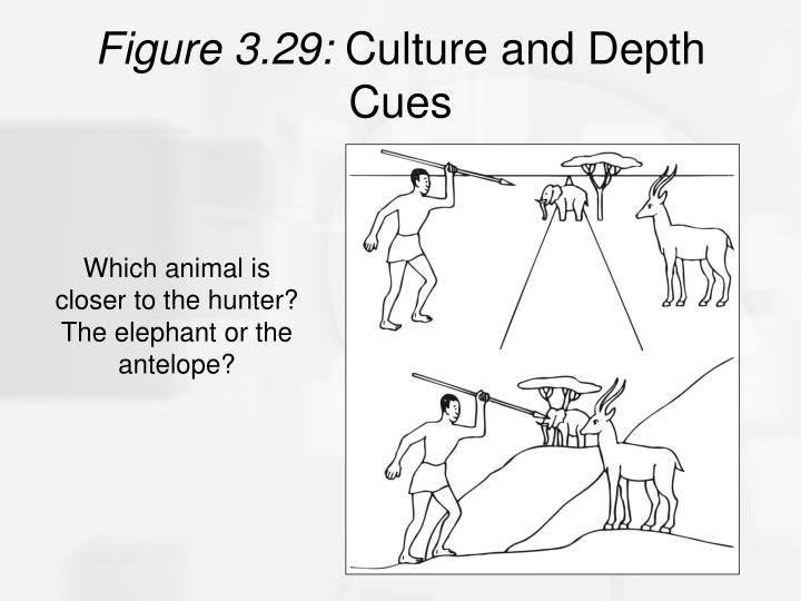 Figure 3.29:
