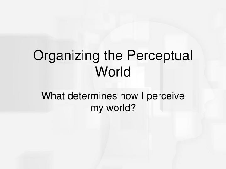 Organizing the Perceptual World