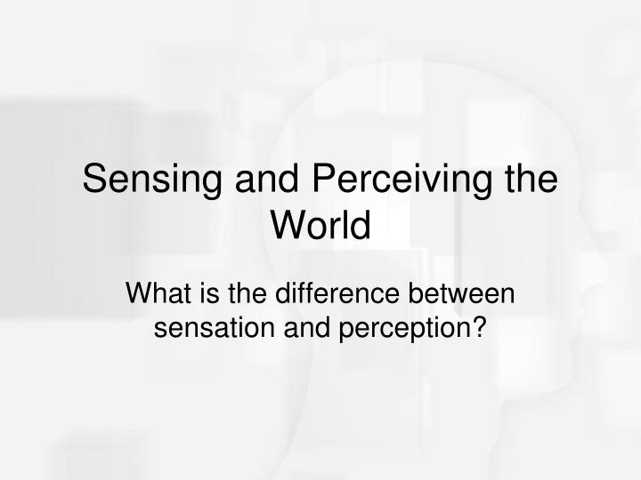 Sensing and Perceiving the World