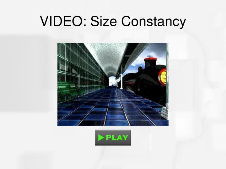 VIDEO: Size Constancy
