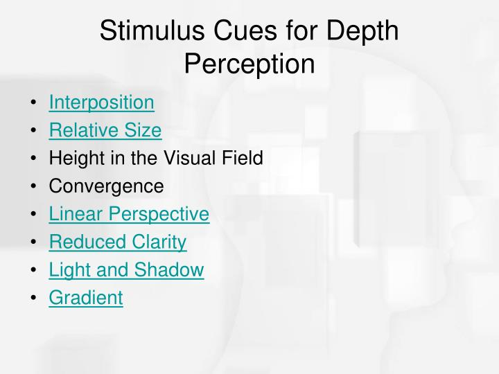 Stimulus Cues for Depth Perception