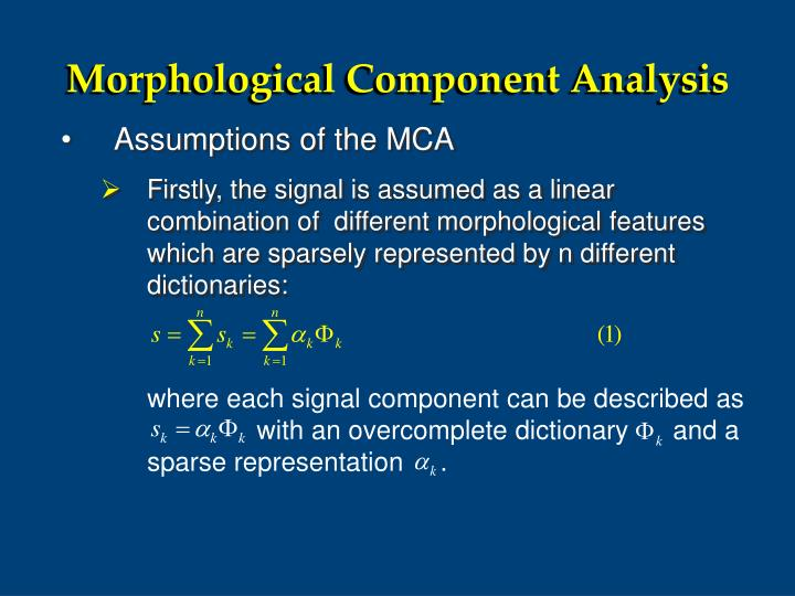 where each signal component can be described as