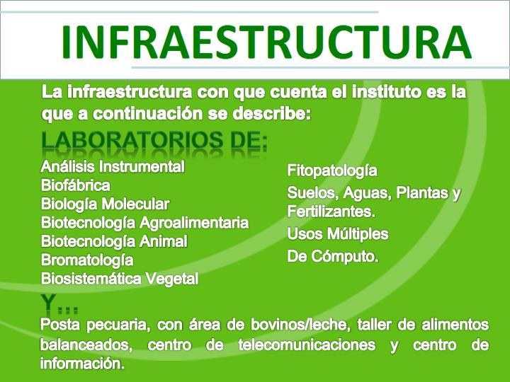 La infraestructura con que cuenta el instituto es la que a continuación se describe: