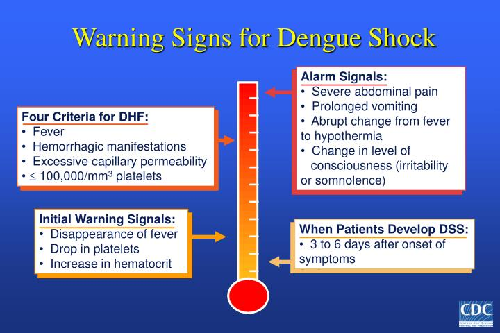 Warning Signs for Dengue Shock