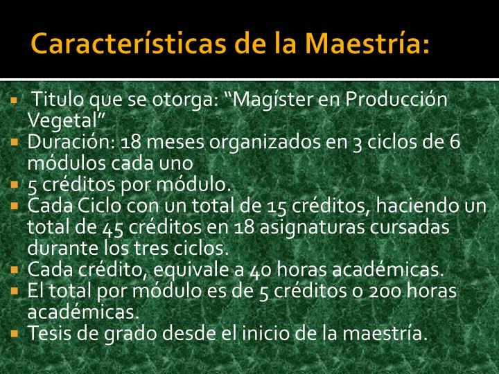 Características de la Maestría: