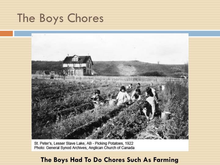 The Boys Chores