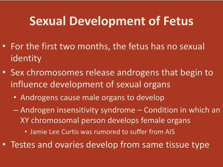 Sexual Development of Fetus