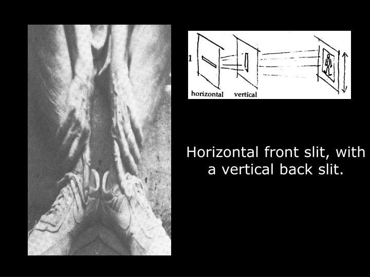 Horizontal front slit, with a vertical back slit.