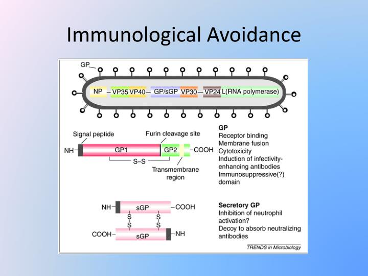 Immunological Avoidance