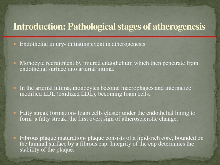 Introduction: Pathological stages of atherogenesis