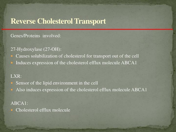 Reverse Cholesterol Transport