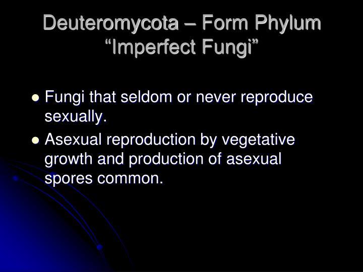 "Deuteromycota – Form Phylum ""Imperfect Fungi"""