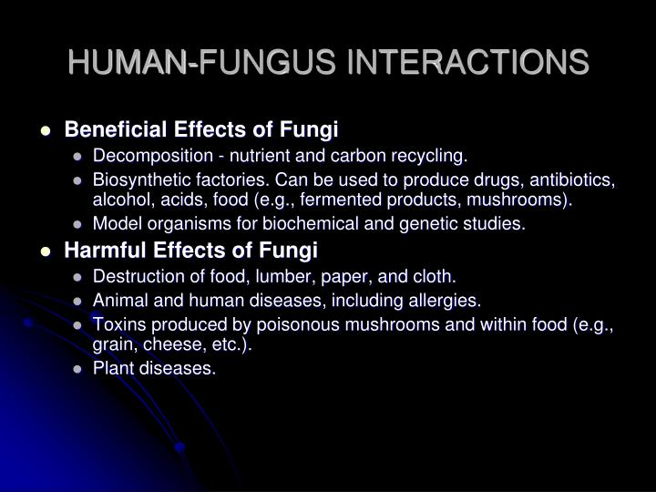 HUMAN-FUNGUS INTERACTIONS