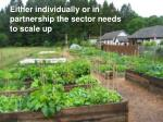 either individually or in partnership the sector needs to scale up