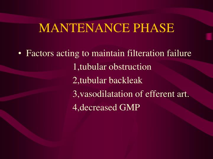 MANTENANCE PHASE