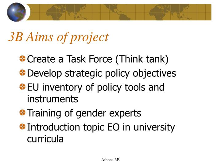 3B Aims of project