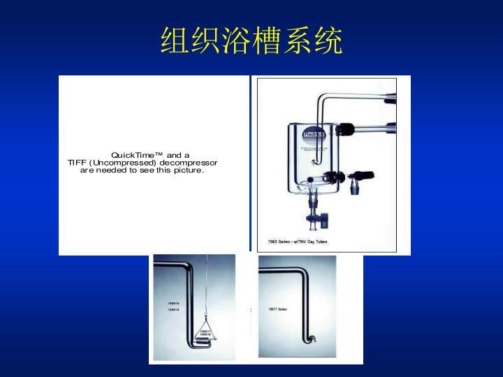 组织浴槽系统