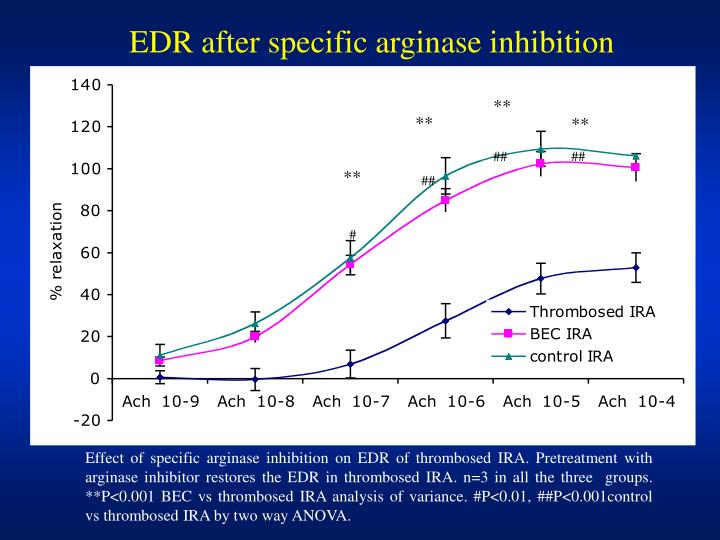 EDR after specific arginase inhibition
