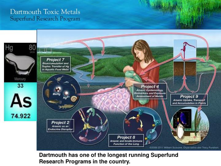 Dartmouth has one of the longest running Superfund Research Programs in the country.