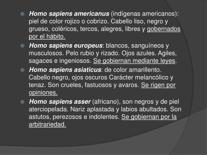 Homo sapiens americanus